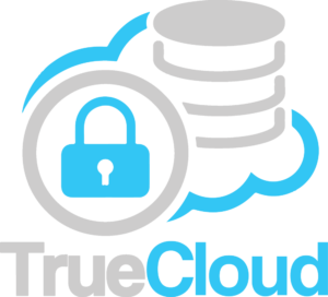 true-cloud-vertical-logo