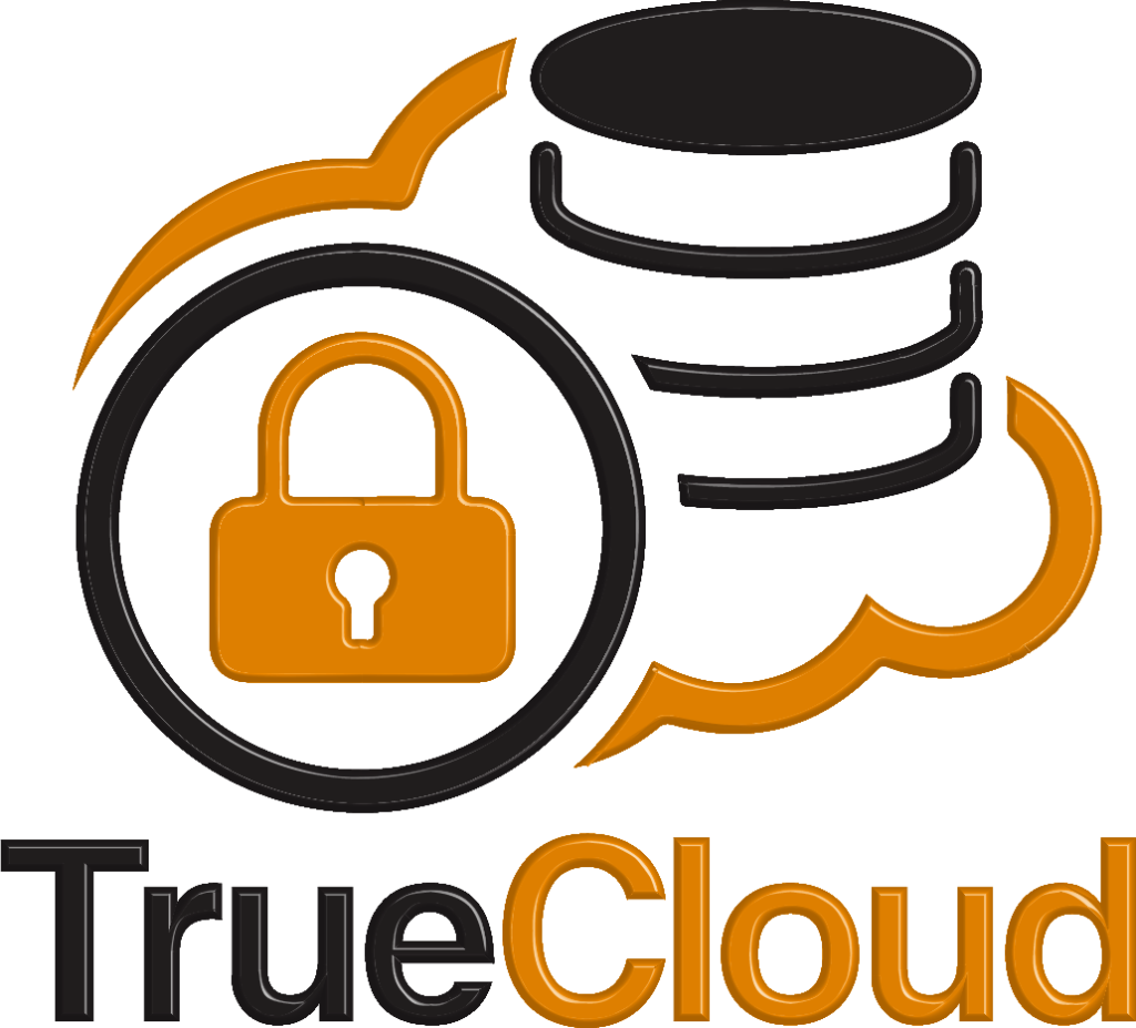 True Cloud Medical Logo 3D (Transparent Background) - Original